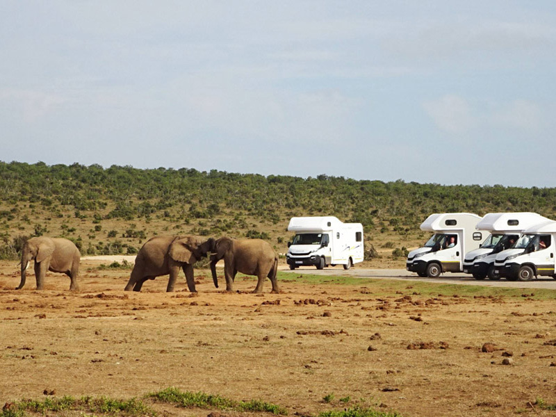Campers and Motorhomes For Sale. Part of the Big6 - the Discoverer 6.